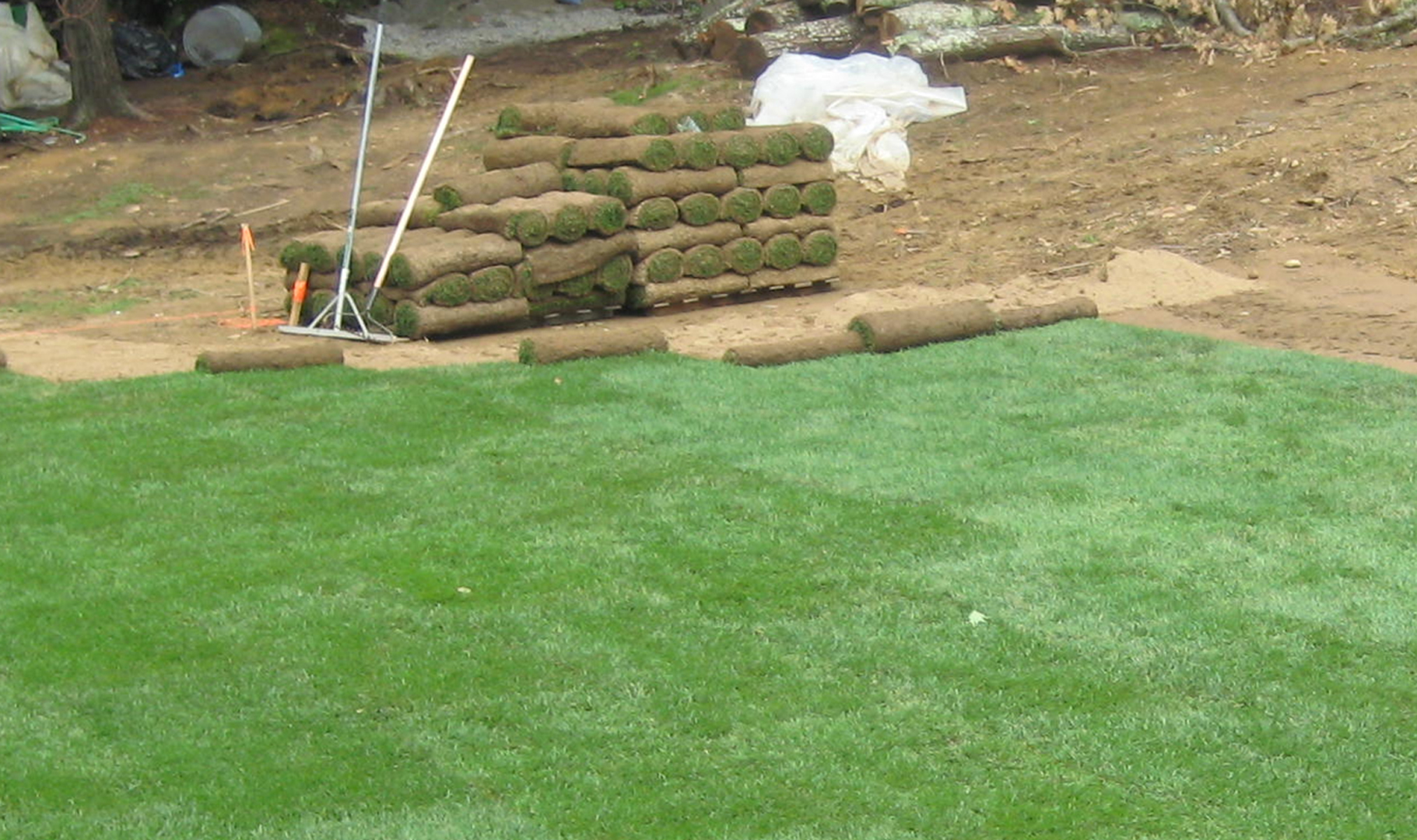 sod installation in wichita ks sod installers sod services